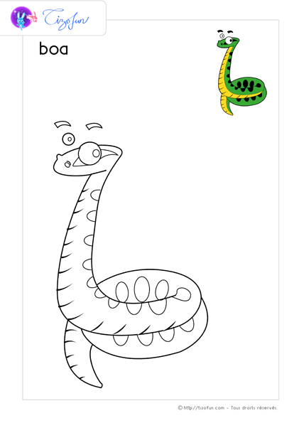 coloriage-animaux-sauvages-dessin-boa